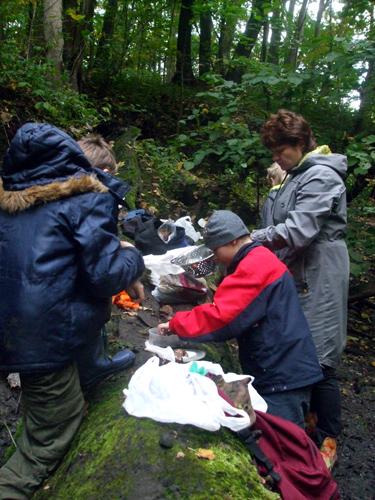 Белемниты, аммониты и двустворки найдены и упакованы.