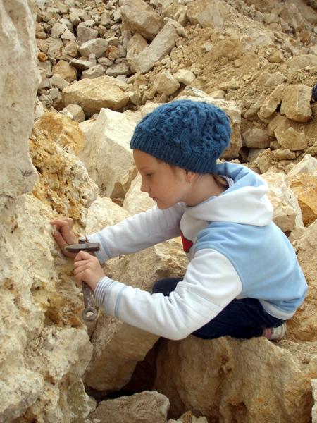 Вот она - гастропода каменноугольного периода.